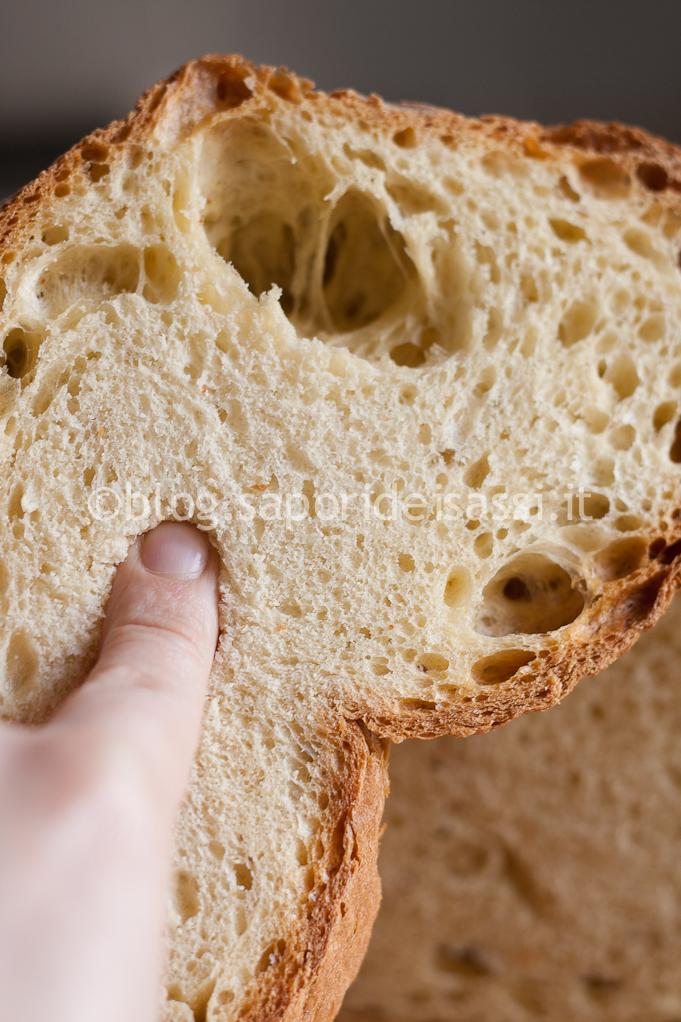 Pane di Matera IGP - mollica