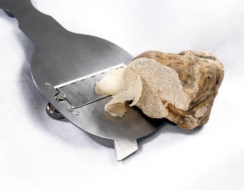 tartufo-bianco-sapori-dei-sassi