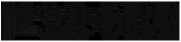 Logo Sole24ore